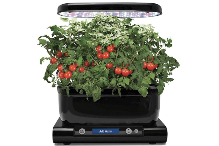 healthy eating using autonomous indoor garden